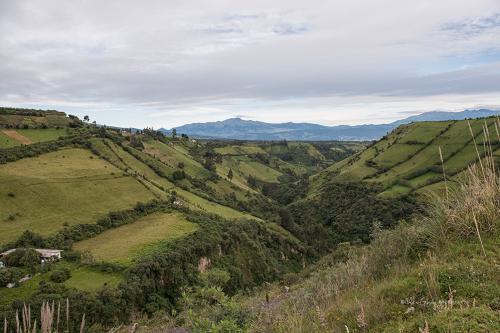 Antisana National Reserve 2