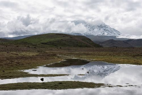Antisana mountain reflecting in water