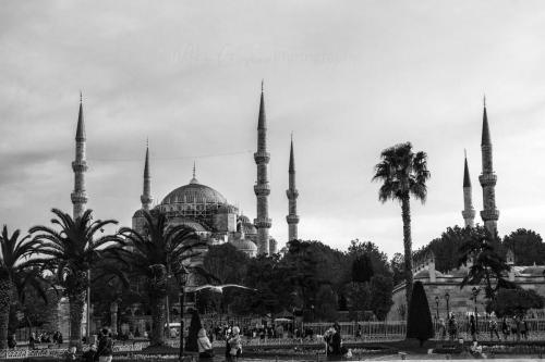 Blue mosque BW