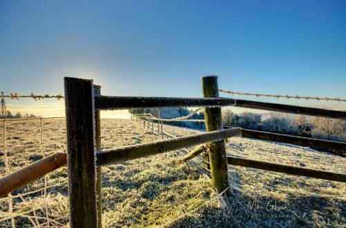 Fiels-with-posts-in-frost-mgp