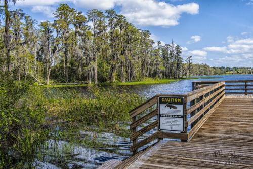Florida-lake-18x12-1280x960
