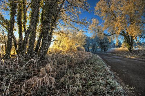 Frosty-Lane-Northamptonshire-mgp