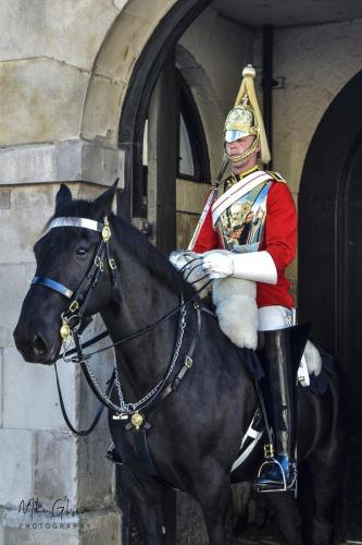 Horse-Guard-Westminster-12x18