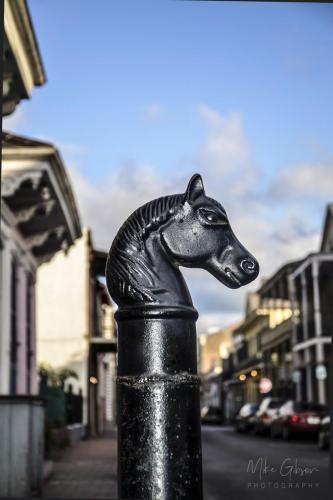 Horse-head-hitching-post-Frfench-Quarter-New-Orleans-12x18-1-2048x2048