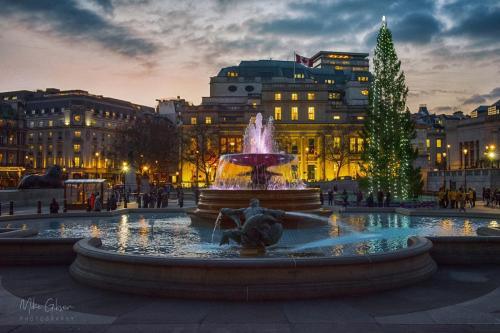 London Trafalgar Square with Christmas tree 18x12