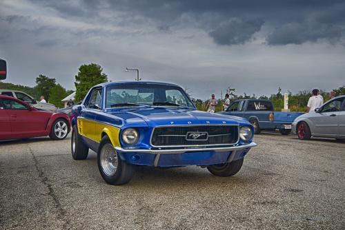 Mustang-near-Gulfport-MS-12x