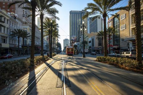 New-Orleans-tram-lines-mgp-12x18-2048x2048