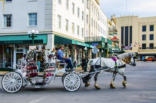 San-Antonio-carriage-12x