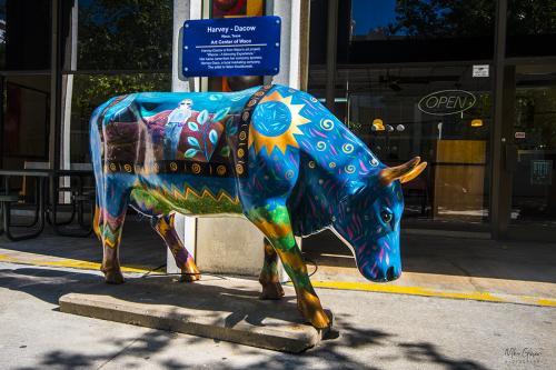 Street-Art-Oklahoma-City-3-12x