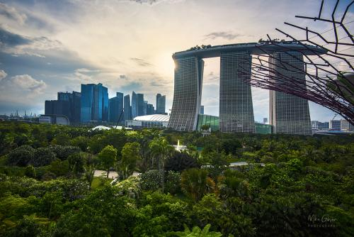 The-Gardens-on-the-Bay-Singapore-12x8