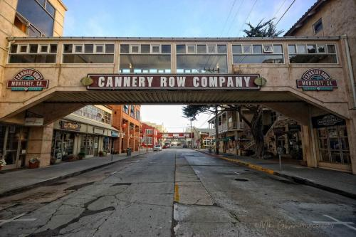 cannery row  18x12 mg