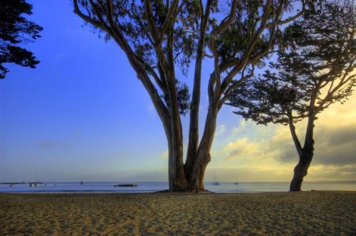 monterey morning beach